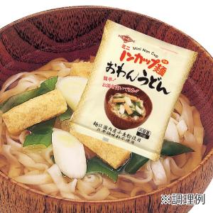 ミニノンカップ麺 おわんうどんイメージ